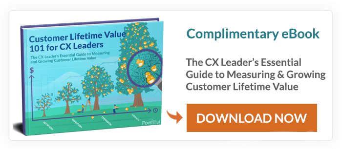 customer lifetime value ebook cover